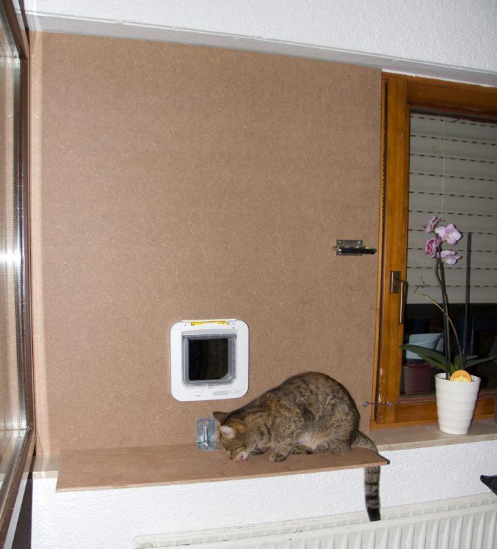 Katzenklappen-Improvisierung fertig!