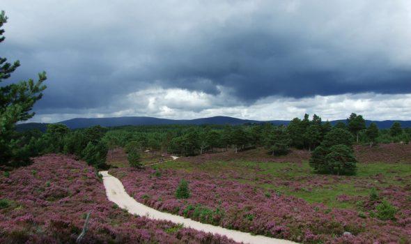 Zwei Wochen wandern in den schottischen Highlands