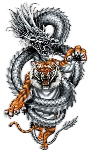 Dragon_Tiger