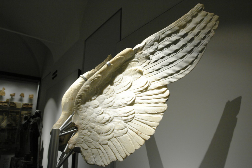 Steinerne Flügel einer Victoria im Palatinmuseum