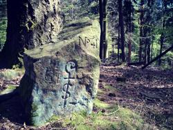 Grenzstein im Schönauer Wald