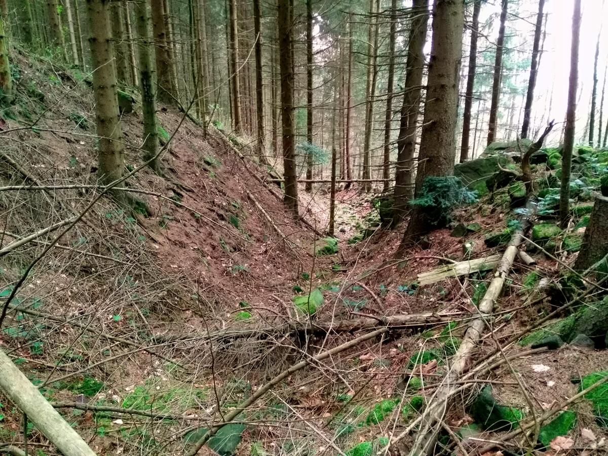 Hohlweg auf dem Heidelberger Königsstuhl