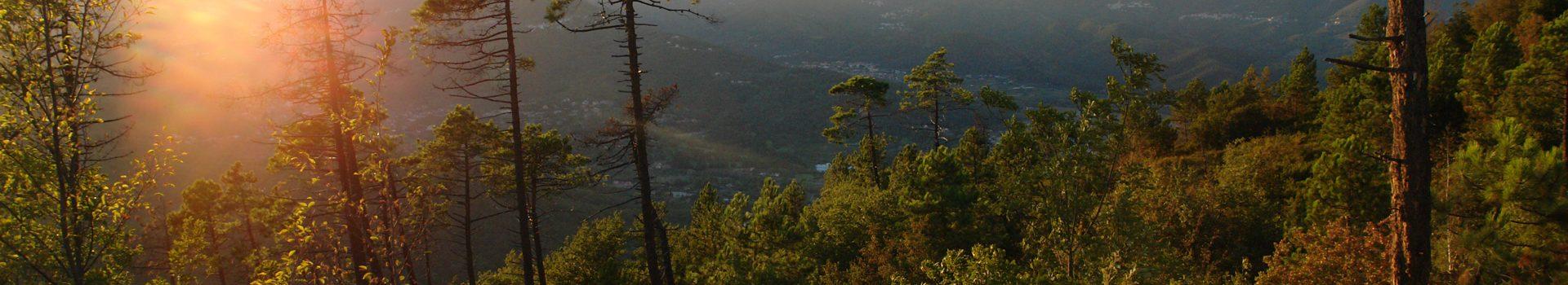 Reisen in Ligurien