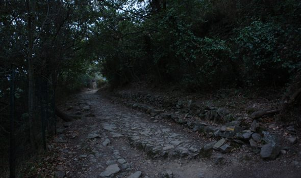Via Iulia Augusta