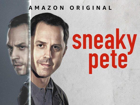 Serienvorstellung: Sneaky Pete – Was ist eigentlich Wahrheit?