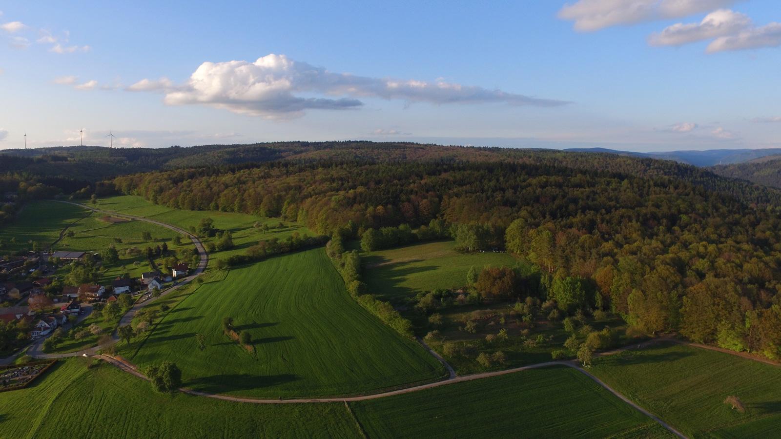 Drohnen-Luftbild mit Wald und Feldern