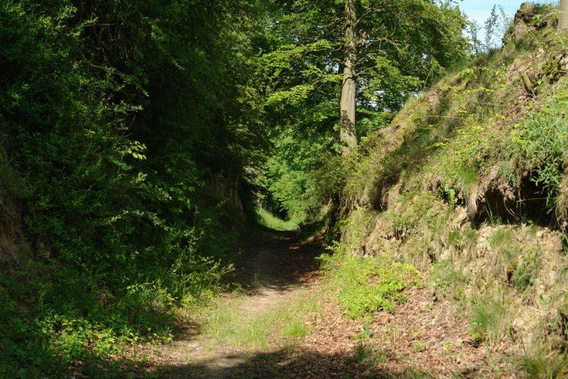 Rennweghohle Kraichgau Zeutern