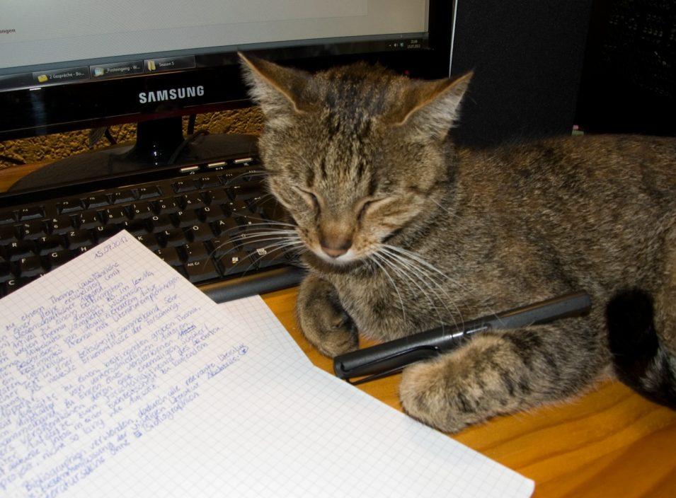 Katze auf Schreibtisch mit Füller