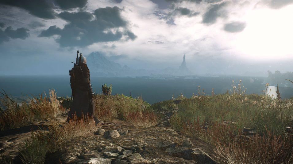 Witcher 3 - Turm in der Ferne