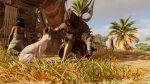 Assassins Creed Origins | Katze