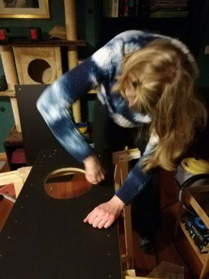 Schrank für Katzenklo bauen