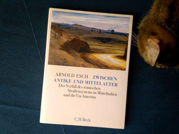 Arnold Esch – Zwischen Antike und Mittelalter