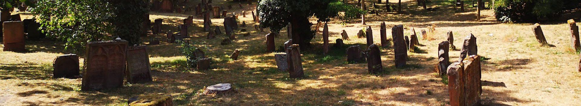 """""""Heiliger Sand"""" – Fotos vom ältesten jüdischen Friedhof Europas in Worms"""