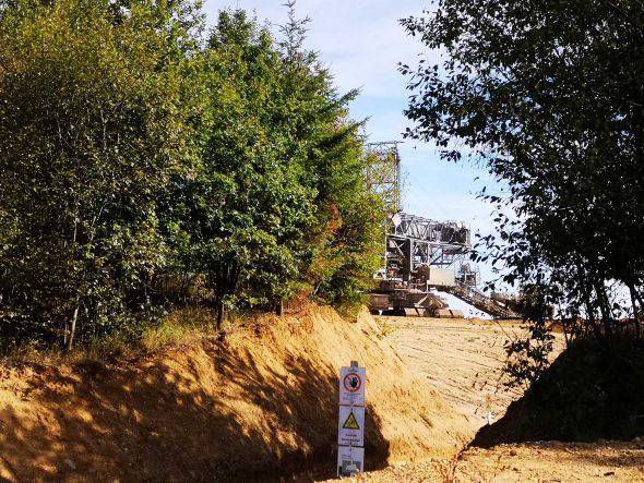 Der Hambacher Forst und die Kohle – ein Trauerspiel