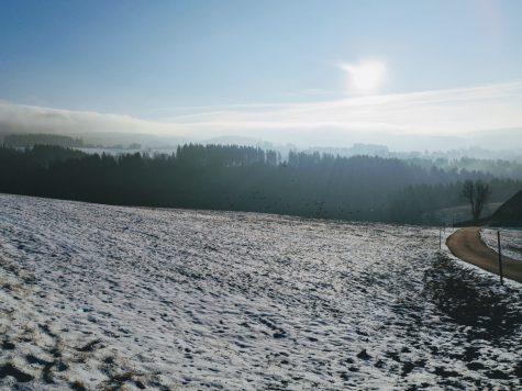 Wunderschöne Stimmung im Schwarzwald