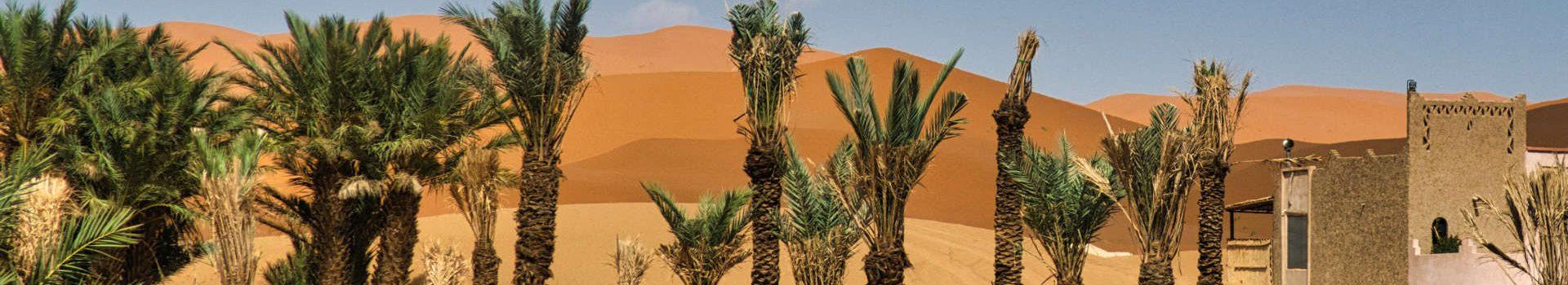Zwei Wochen Abenteuerurlaub in Marokko