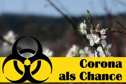 Corona als Chance