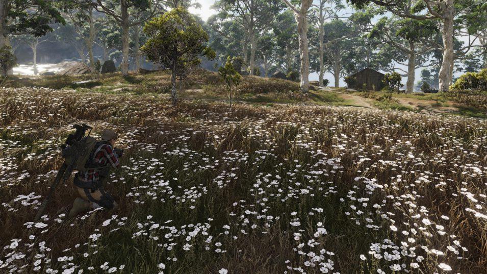Ghost Recon Breakpoint - Weißes Blütenmeer
