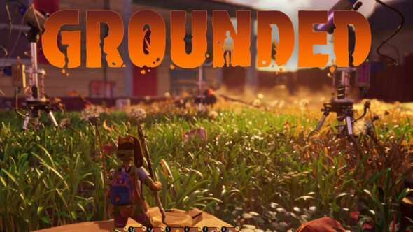 Grounded: Mit Insekten auf Augenhöhe im wilden Garten