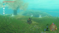 """Lichthasen"" und ein scheues ""Licht-Rentier"" in Breath of the Wild"