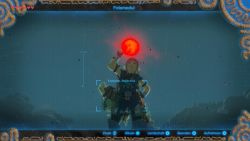 Fotomodul in Breath of the Wild